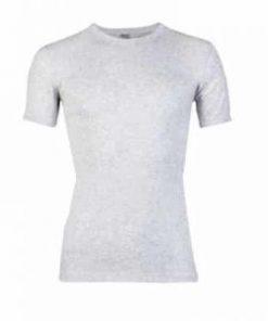 Beeren t-shirt grijs mellee 100% katoen