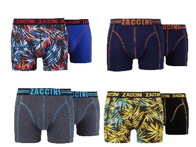 zaccini boxers